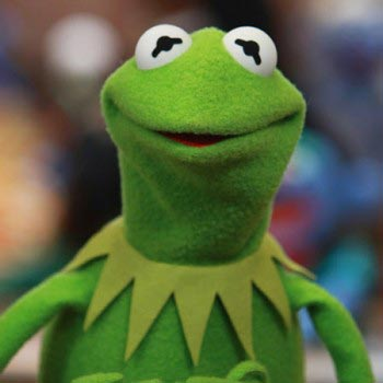kermit_the_frog-green-peace-in-the-city-